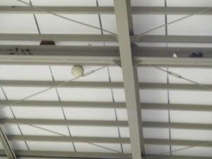 天井と支柱に挟まったバレーボール球。いつの時代も、そこには、ボールやらシャトルやら、何かしら展示?!されています。