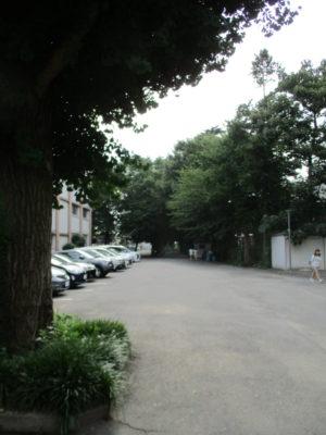 あの頃の大泉校舎の入口付近まで来ました。グラント方向へ振り返ると、緑が優しい息遣い。
