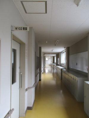 中学の頃の1年1組のあたりに立ってみました。一番奥の壁は、生徒玄関のそれです。