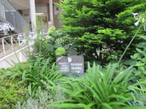 正面入口の緑たち。紫陽花、アガパンサス・・・学校プレートを賑やかに演出しています。