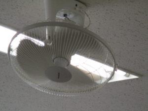 夏本番の7月、しかも今年は酷暑・・・天井の扇風機はフル回転です。