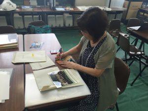 皆さんに親しみをもって写真を見ていただけるよう、付箋紙にキャプションを付けてゆく石瀬さん。