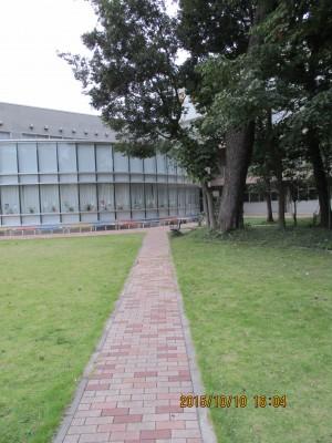 E棟から見える建物は図書館