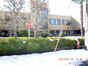 45年ぶりの大雪の跡